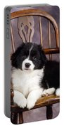 Border Collie Puppy On Chair Portable Battery Charger