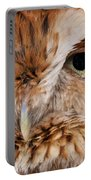 Boreal Owl Eyes  Portable Battery Charger