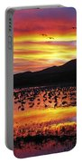 Bosque Sunset II Portable Battery Charger