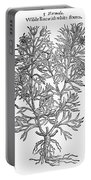 Botany: African Rue, 1597 Portable Battery Charger