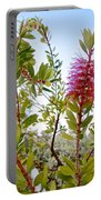 Bottlebrush On A Snowy Day In Park Sierra-ca  Portable Battery Charger