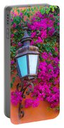 Bougainvillea And Lamp, Mexico Portable Battery Charger