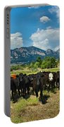 Boulder Beef Portable Battery Charger