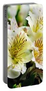 Bouquet Of Alstroemeria Portable Battery Charger