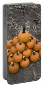 Bowling For Pumpkins Portable Battery Charger