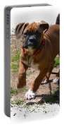 Boxer Puppy 14-1 Portable Battery Charger