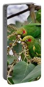 Brace Of Chiriqui Conures Portable Battery Charger