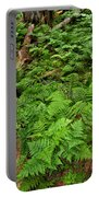 Bracken Portable Battery Charger
