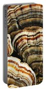 Bracket Fungus 1 Portable Battery Charger