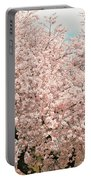 Branch Brook Cherry Blossoms Iv Portable Battery Charger
