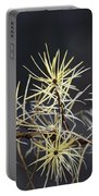 Branch In Winter Portable Battery Charger