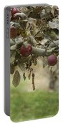 Branch Of An Apple Tree Portable Battery Charger by Juli Scalzi