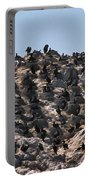 Brandts Cormorant Colony Portable Battery Charger