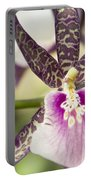 Bratonia Miltassia Charles M Fitch Izumi Orchid Hawaii  Portable Battery Charger