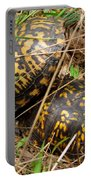 Breeding Box Turtles Portable Battery Charger