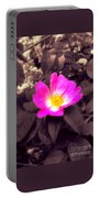 Briar Rose  Portable Battery Charger