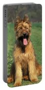 Briard Puppy Portable Battery Charger