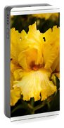 Bright Bright Spring Yellow Iris Flower Fine Art Photography Print  Portable Battery Charger