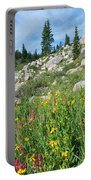 Bright Colors Of A Colorado Summer Portable Battery Charger