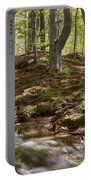 Bright Forest Creek Portable Battery Charger