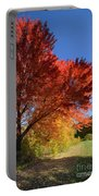 Bright Orange Of Fall Portable Battery Charger