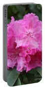 Bright Pink Blossoms Portable Battery Charger