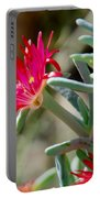 Bright Pink Flower Portable Battery Charger