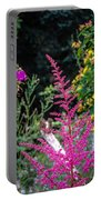 Brilliant Astilbe In Markree Castle Gardens Portable Battery Charger
