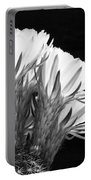 Brilliant Blossoms Diptych Right Portable Battery Charger