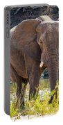 Brilliant Elephant Portable Battery Charger