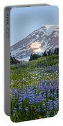 Brilliant Meadow Portable Battery Charger