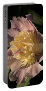 Brilliant Spring Sunshine - A Showy Pink Peony From My Garden Portable Battery Charger