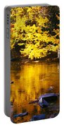 Brilliant Yellows Portable Battery Charger