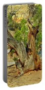 Bristlecone 1 Portable Battery Charger