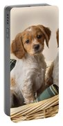 Brittany Dog Puppies In Basket Portable Battery Charger