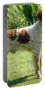 Brittany Dog, Standing Side Portable Battery Charger