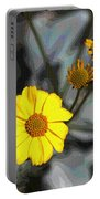 Brittle Bush Flowers In December Portable Battery Charger