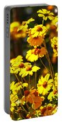 Brittle Bush In Bloom  Portable Battery Charger