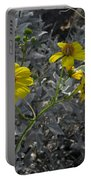 Brittlebush Flowers Portable Battery Charger