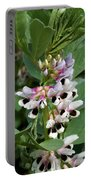 Broad Beans Portable Battery Charger