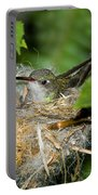 Broad-billed Hummingbird In Nest Portable Battery Charger
