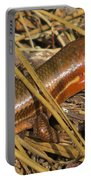 Broad-headed Skink II Portable Battery Charger