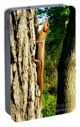 Broad Headed Skink Portable Battery Charger