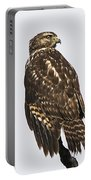 Broad Tailed Hawk Portable Battery Charger