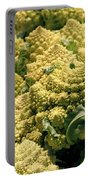 Broccoflower Portable Battery Charger