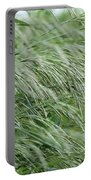Brome Grass In The Hay Field Portable Battery Charger