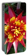 Bromelaid Portable Battery Charger