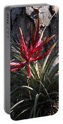 Bromeliaceous Portable Battery Charger