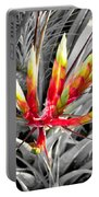Bromeliad 1 Portable Battery Charger