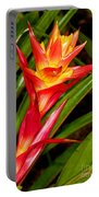 Bromeliad Blossom - Tillandsia Portable Battery Charger